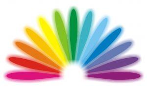 barwy paleta